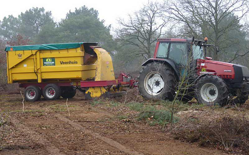 houtmarkt - biomassa
