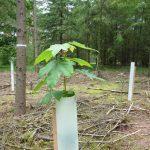 Kennis en inzichten eco2eco helpen bij aanpak klimaatadaptatie