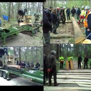 boeiende houtanalyse tijdens cursus 'Houtkwaliteit herkennen en waarderen'